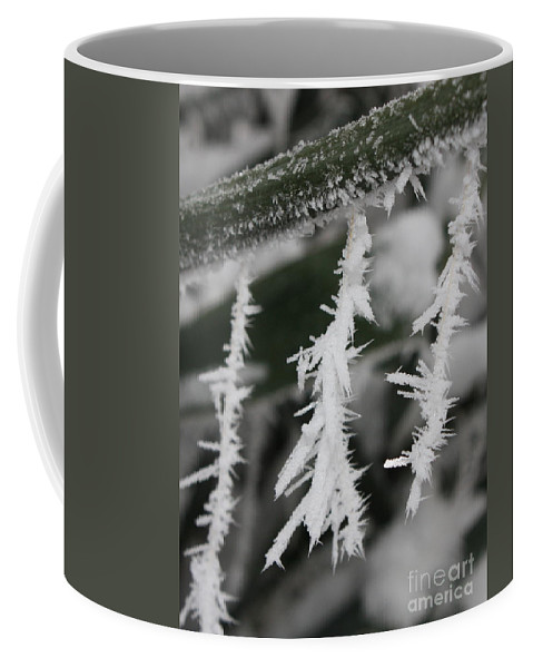 Frost Coffee Mug featuring the photograph Jack Frost Was Here by Carol Groenen