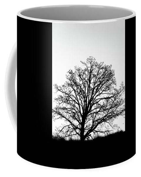 Tree Coffee Mug featuring the photograph Jackson By Pete Ramirez by Peter Ramirez