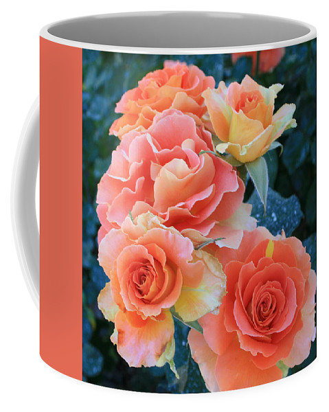 Jacob's Coat Coffee Mug featuring the photograph Jacob by Marna Edwards Flavell