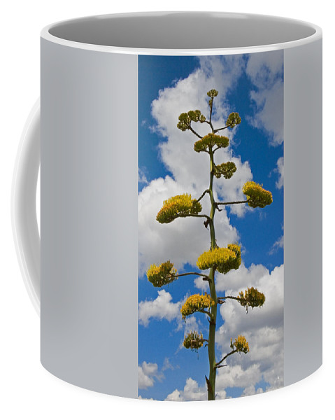 Blue Coffee Mug featuring the photograph Jacobs Ladder by Skip Hunt