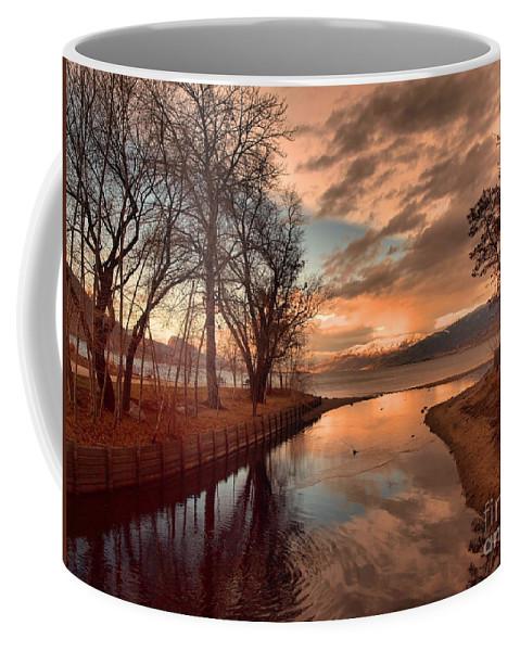 Sunset Coffee Mug featuring the photograph January 15 2010 by Tara Turner