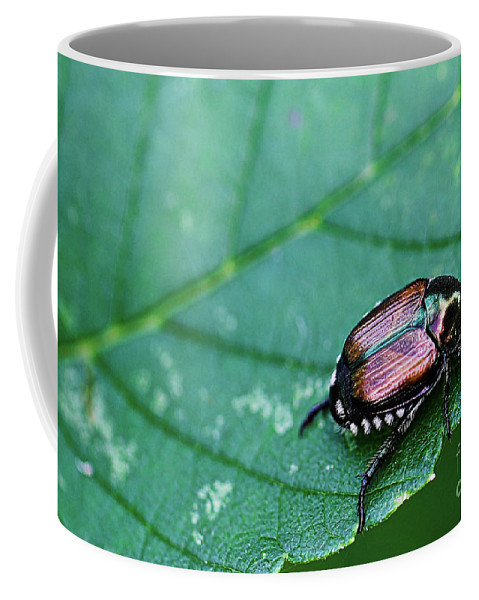 Beetle Coffee Mug featuring the photograph Japanese Beetle by Amber D Hathaway Photography