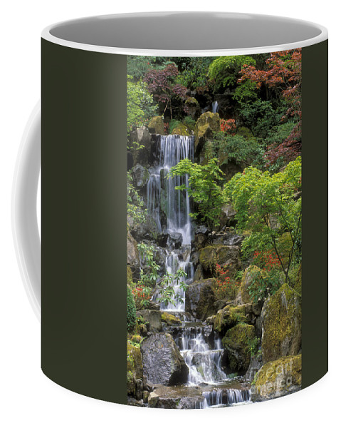 Waterfall Coffee Mug featuring the photograph Japanese Garden Waterfall by Sandra Bronstein