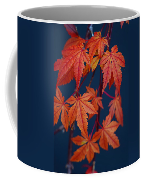 Japanese Maple Leaves In Autumn Coffee Mug featuring the photograph Japanese Maple Leaves In Autumn by Frank Wilson