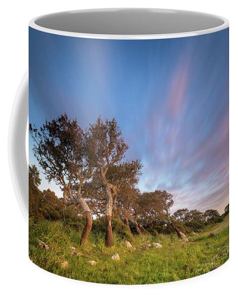 Sardinia Coffee Mug featuring the photograph Jara's Wind by Daniele Murru