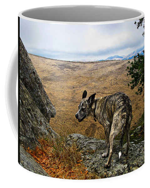 Las Trampas Coffee Mug featuring the photograph Jazz On The Rocks by Karen W Meyer