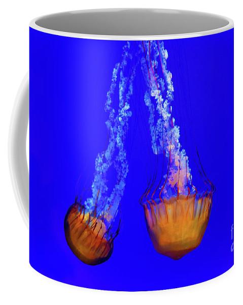 California Coffee Mug featuring the photograph Jellyfish Art by Anna Serebryanik