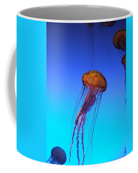 Jellyfish Coffee Mug featuring the photograph Jellyfish by Robert Meanor