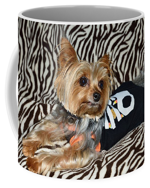 Yorkie Coffee Mug featuring the photograph Jibby 4 by Michael Scott