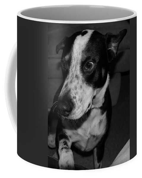 Black And White Coffee Mug featuring the photograph Jimmy by Rob Hans