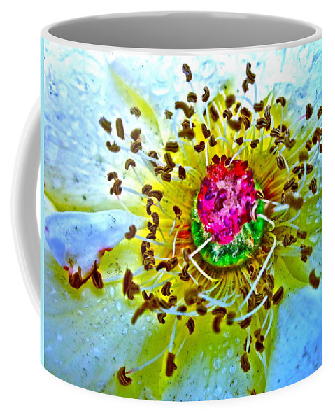 Photograph Of Rose Coffee Mug featuring the photograph Jive by Gwyn Newcombe