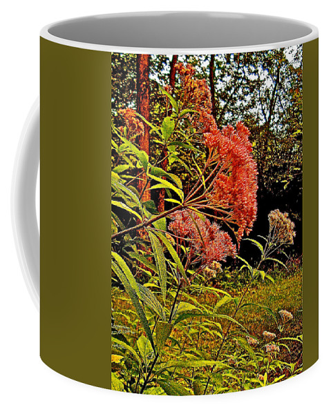 Joe-pye-weed Near Schroon River In The Adirondacks Coffee Mug featuring the photograph Joe-pye-weed Near Schroon River In New York by Ruth Hager