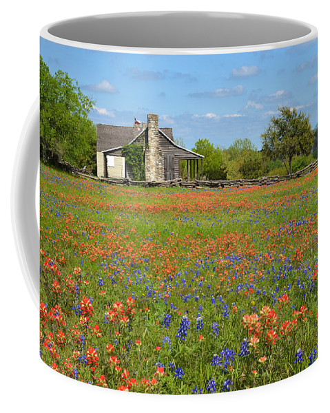 John Cole Coffee Mug featuring the photograph John P Cole's Cabin In Old Baylor Park by Lynn Bauer