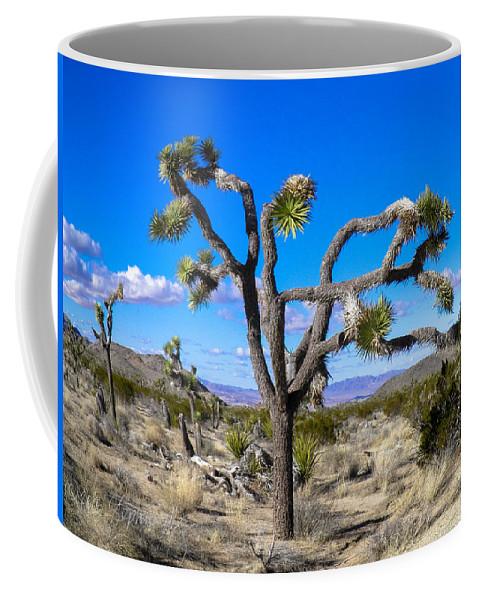 Joshua Tree Coffee Mug featuring the photograph Joshua Tree National Park Winter's Day by Stephen Settles