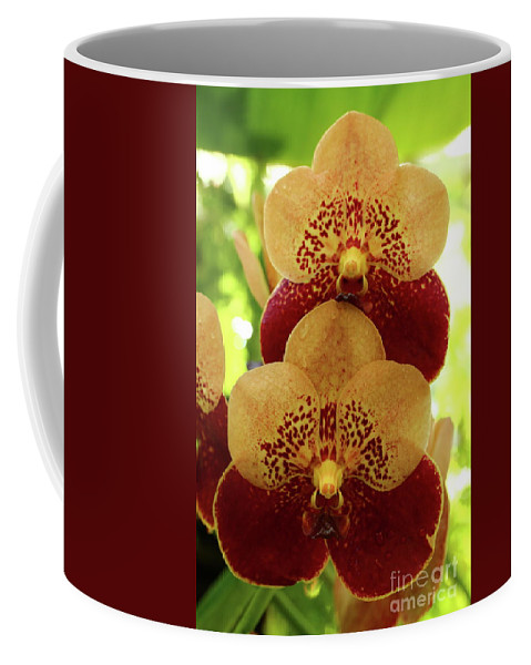 Closeup Coffee Mug featuring the photograph Joy And Happyness by Christiane Schulze Art And Photography