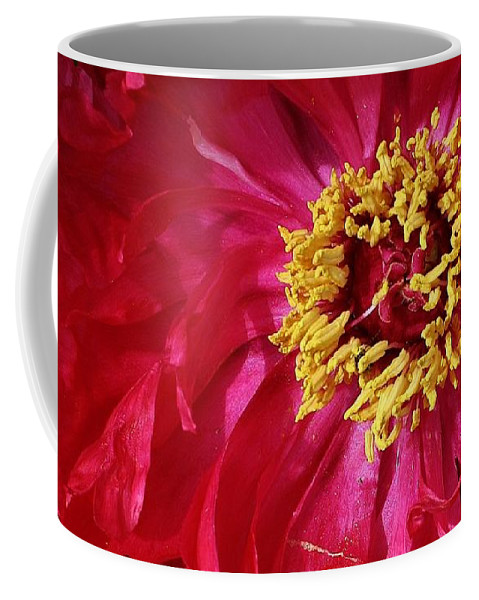 Flora Coffee Mug featuring the photograph Joy In The Garden by Bruce Bley
