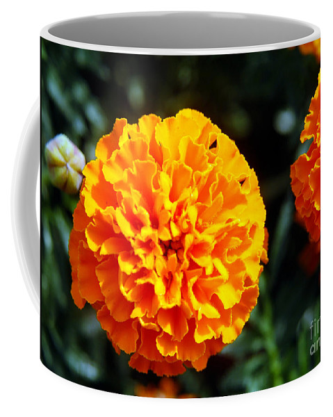 Clay Coffee Mug featuring the photograph Joyful Orange Floral Lace by Clayton Bruster