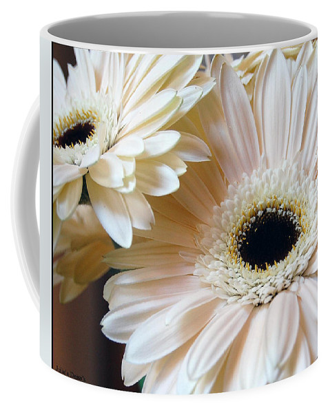 Daisy Coffee Mug featuring the photograph Julia's Daisy's by Robert Meanor