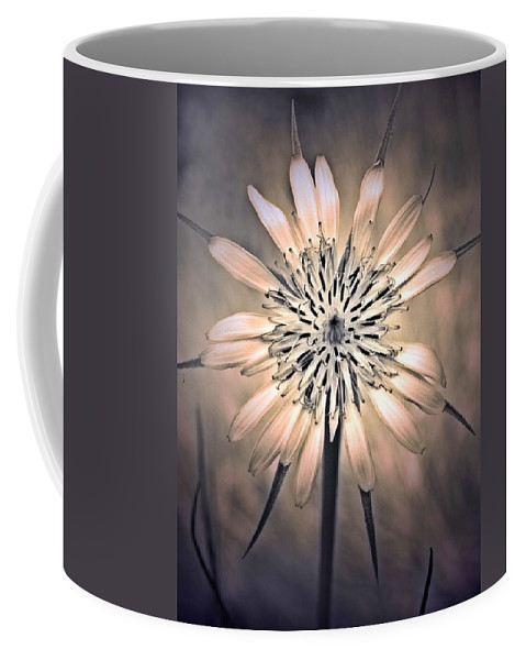 Flower Coffee Mug featuring the photograph July 1 2010 by Tara Turner