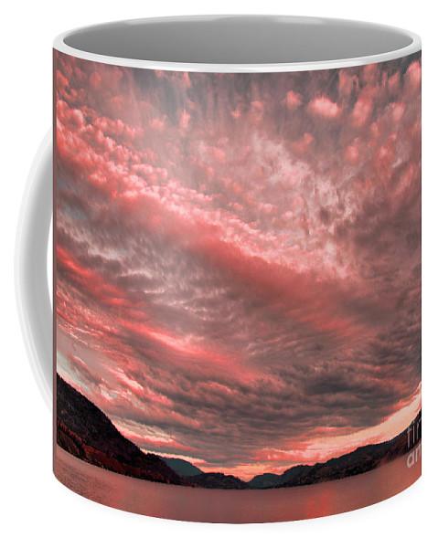 Pink Coffee Mug featuring the photograph June 28 2010 by Tara Turner