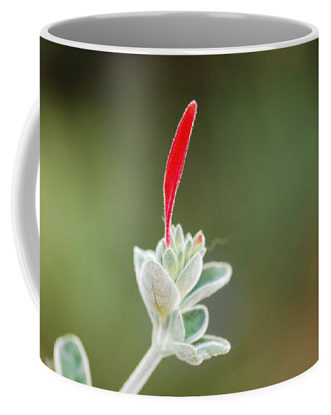 Floral Coffee Mug featuring the photograph Just A Moment by Donna Blackhall