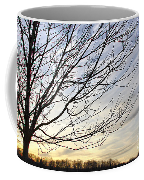 Sky Coffee Mug featuring the photograph Just A Tree And Clouds by Deborah Benoit