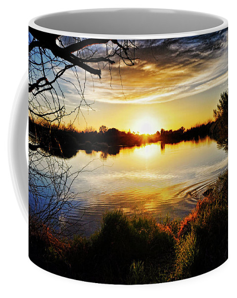 Arizona Coffee Mug featuring the photograph Just Beyond The Trees by Saija Lehtonen