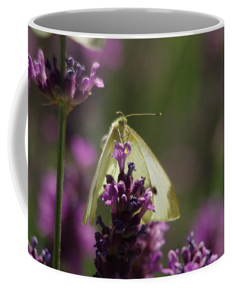 Moth Coffee Mug featuring the photograph Just Hanging On by Jeff Swan