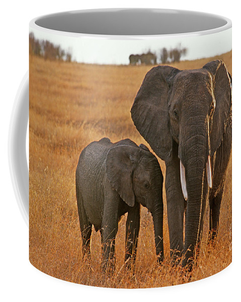 Africa Coffee Mug featuring the photograph Just Mom And Me by Sandra Bronstein