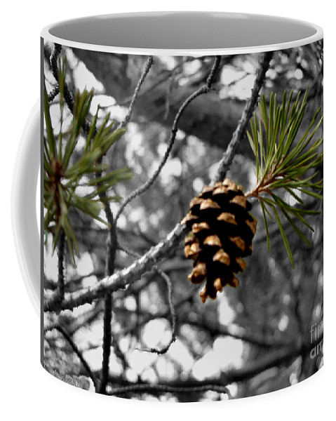 Pine Cone Coffee Mug featuring the photograph Just Starting by September Stone