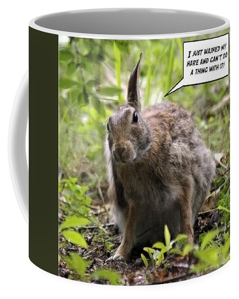2d Coffee Mug featuring the photograph Just Washed My Hare by Brian Wallace