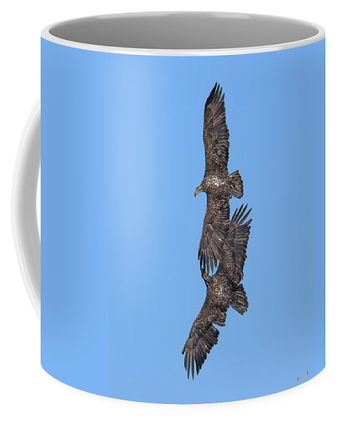 Nature Coffee Mug featuring the photograph Juvenile Bald Eagles Drb0226 by Gerry Gantt