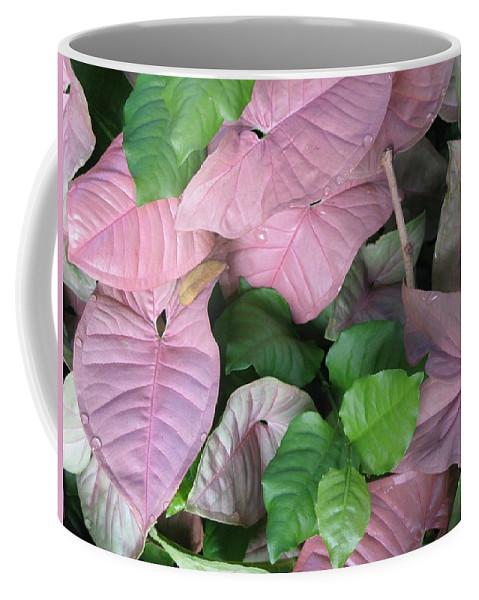 Pink Coffee Mug featuring the photograph Kauai Pinks by Carol Sweetwood