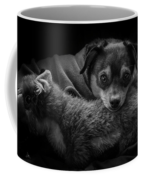 Ron Jones Coffee Mug featuring the photograph Keeping Warm by Ron Jones