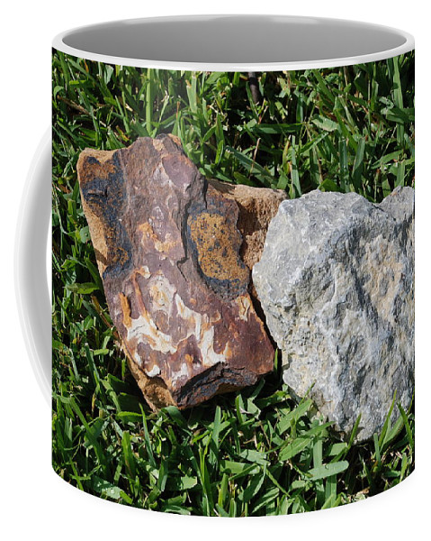 Kentucky Coffee Mug featuring the photograph Kentucky Meets New Mexico In Florida by Rob Hans