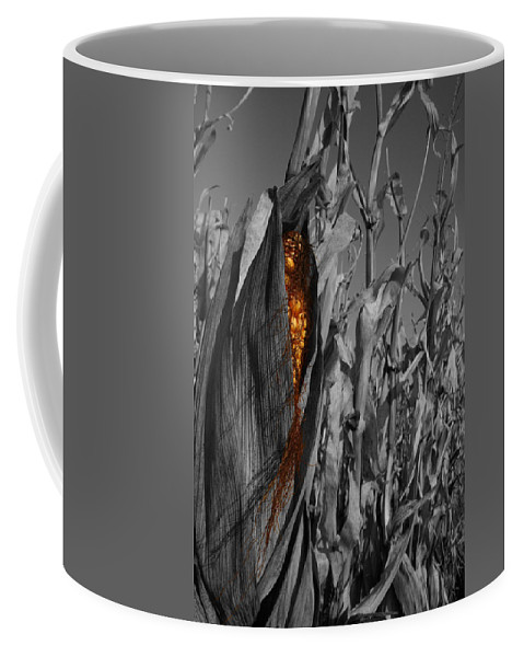 Color Desaturation Coffee Mug featuring the photograph Kernels and Silk by Dylan Punke