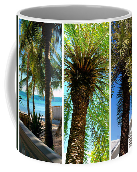 Palm Triplets Coffee Mug featuring the photograph Key West Palm Triplets by Susanne Van Hulst