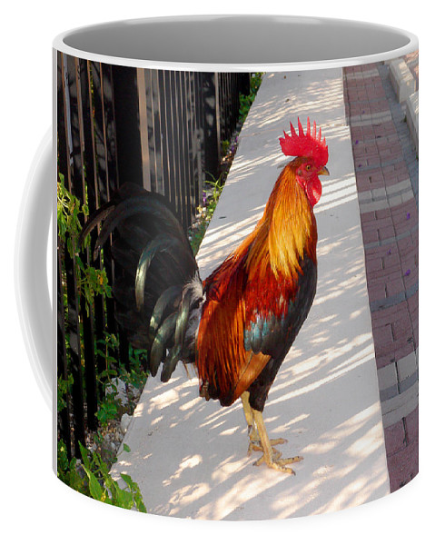 Photography Coffee Mug featuring the photograph Key West Rooster by Susanne Van Hulst