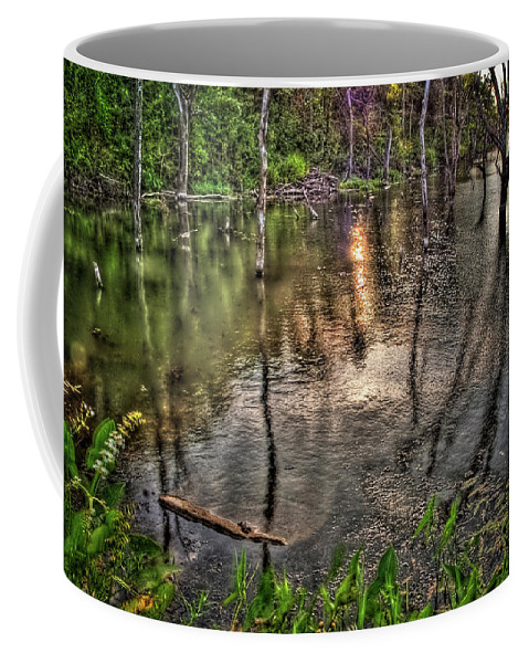 Hdr Coffee Mug featuring the photograph Kill Creek 8283 by Timothy Bischoff