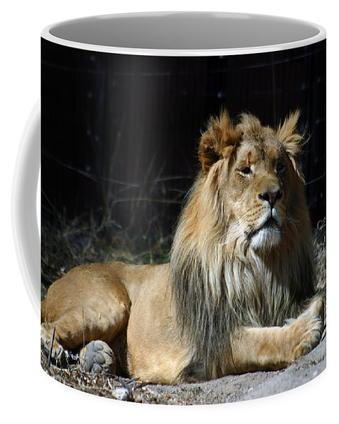 Lion Coffee Mug featuring the photograph King by Anthony Jones