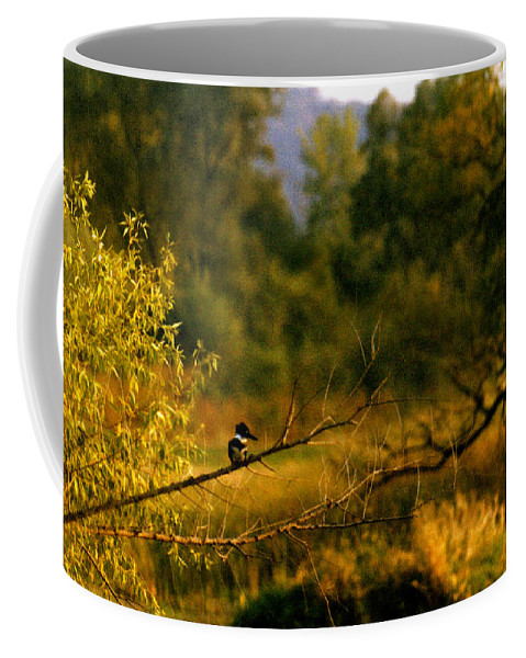 Landscape Coffee Mug featuring the photograph King Fisher by Steve Karol