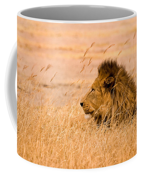 3scape Coffee Mug featuring the photograph King Of The Pride by Adam Romanowicz