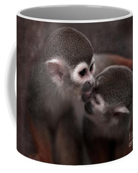 Monkeys Coffee Mug featuring the photograph Kiss Me by Angel Ciesniarska