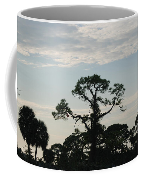 Kite Coffee Mug featuring the photograph Kite In The Tree by Rob Hans