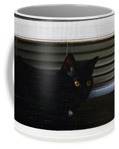 Nature Coffee Mug featuring the photograph Kitty In The Window 2 by Don Baker