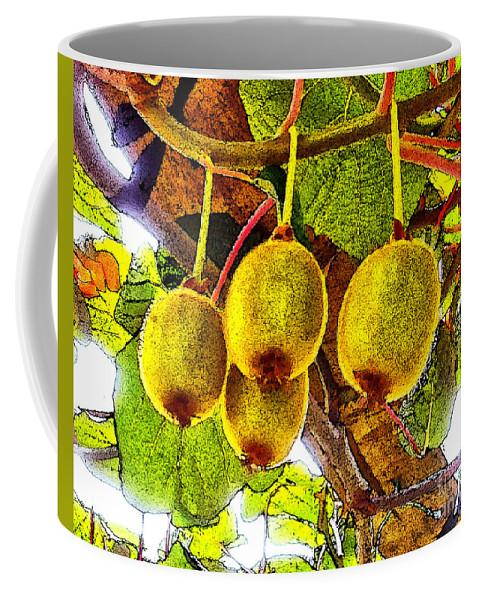 Kiwi Fruit Coffee Mug featuring the photograph Kiwis In Kiwiland by Stefan H Unger