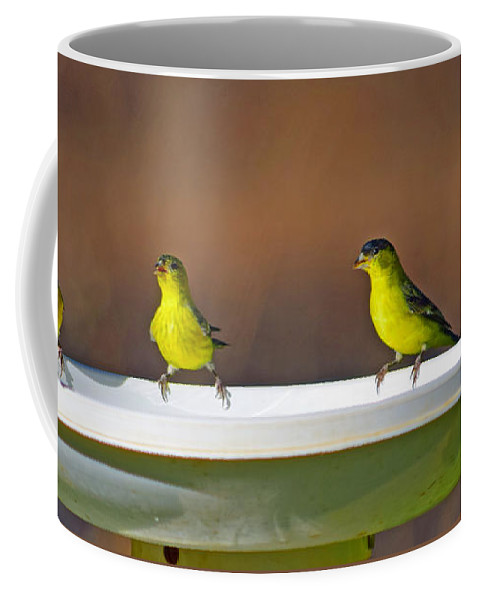 Bird Coffee Mug featuring the photograph Knights Of The Roundtable by Alan C Wade