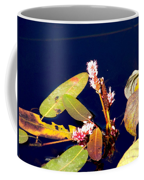 Wildflower Coffee Mug featuring the photograph Knotweed On Deep Blue by William Tasker