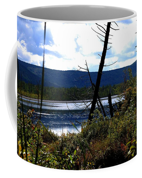 Digital Photograph Coffee Mug featuring the photograph Labrador Pond by David Lane