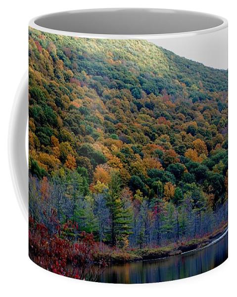 Digital Photograph Coffee Mug featuring the photograph Labrador Pond Hillside by David Lane